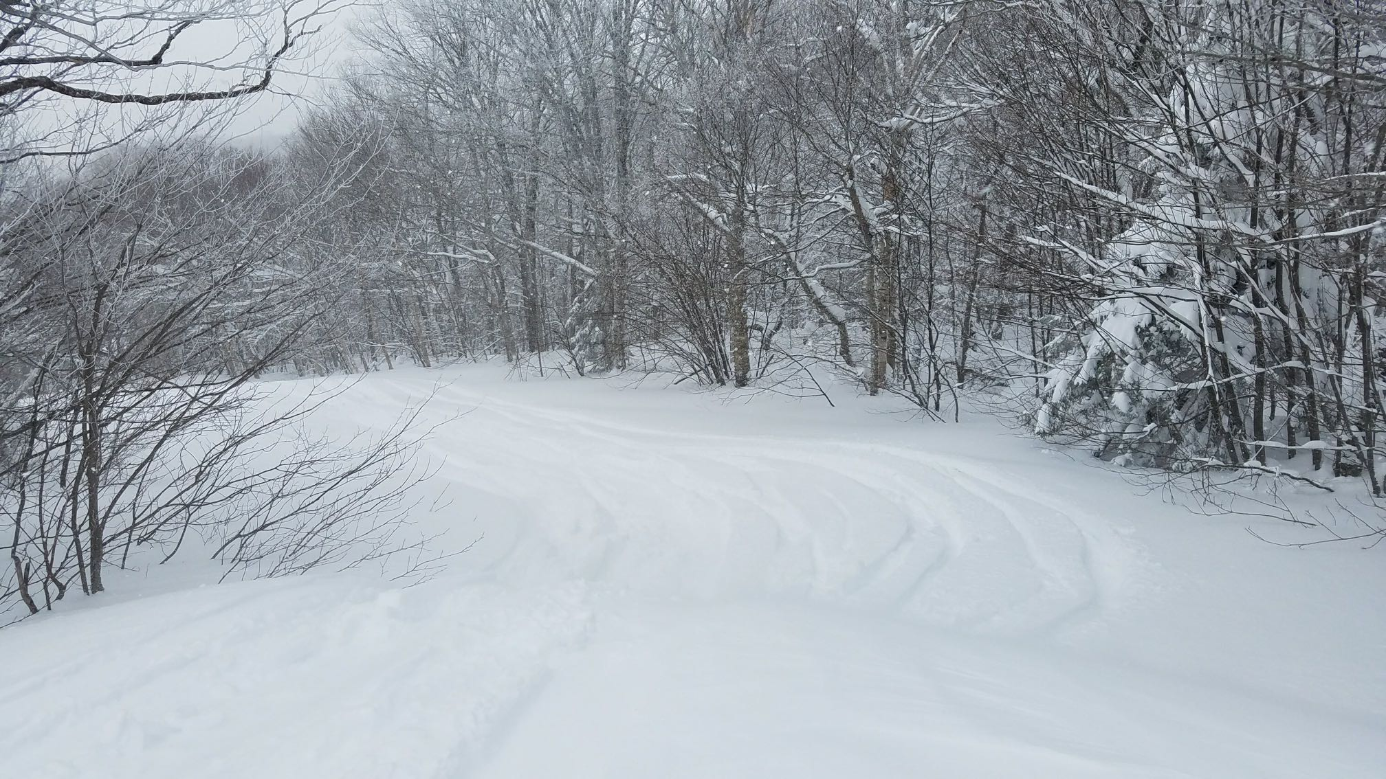 This is the reason for being in Vermont. Fresh barely tracked snow at Pico Mountain, March 2018